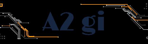 A2 gi